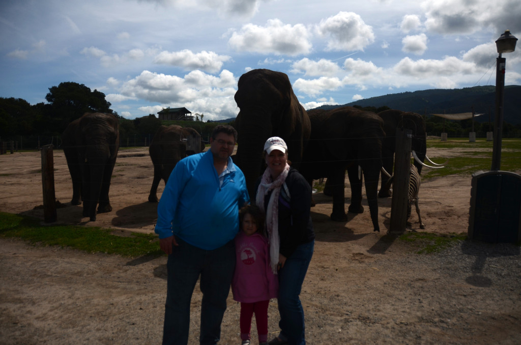 family-photo-elephants